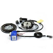 Encendido rotor Minarelli AC/LC Polini Evolution digital PVL