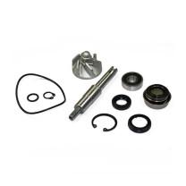 Kit reparación bomba de agua Honda SH 125/150cc 2001-2012 Allpro